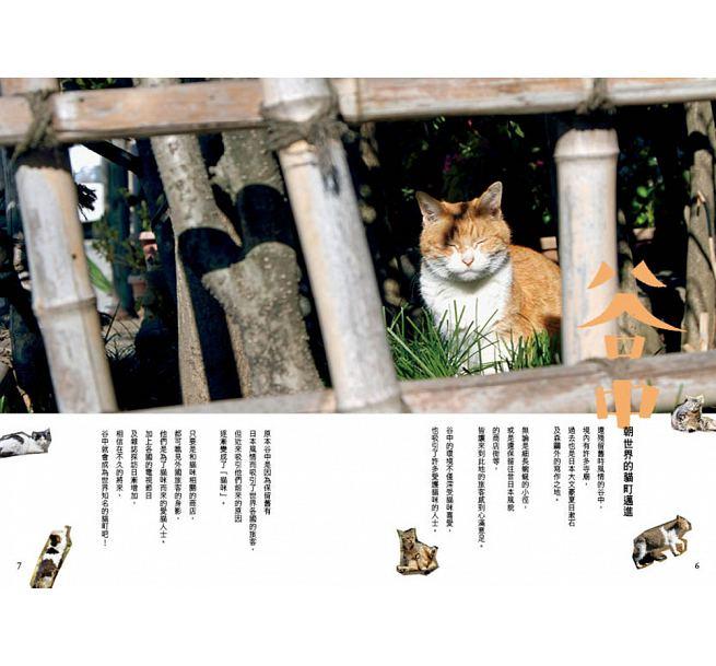 東京貓町散步日和:慢行地鐵沿線23間文創小舖 300款雜貨 Cafe | 林氏璧和美狐團三狐的小天地
